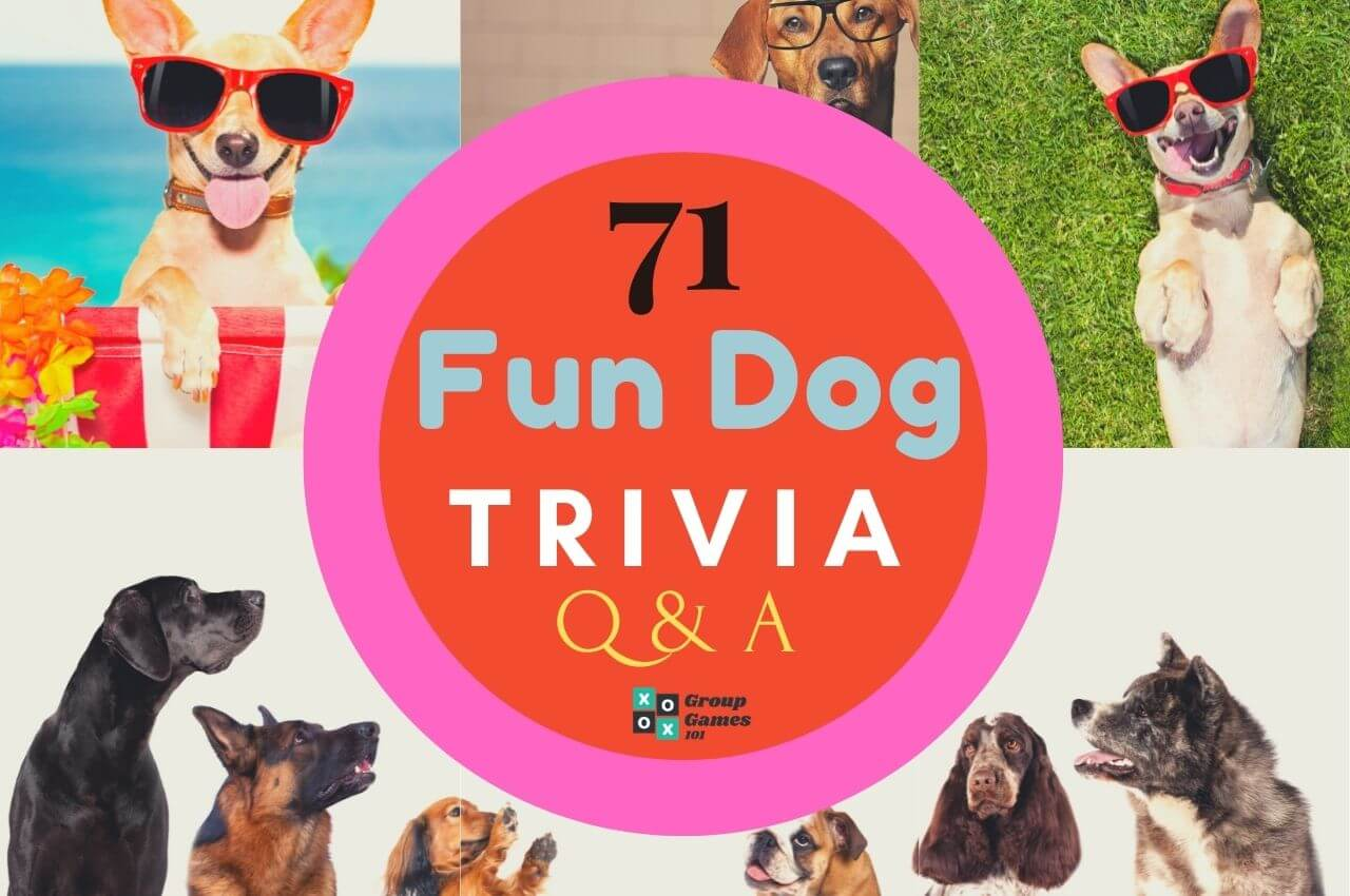 Dog trivia questions and answers Image