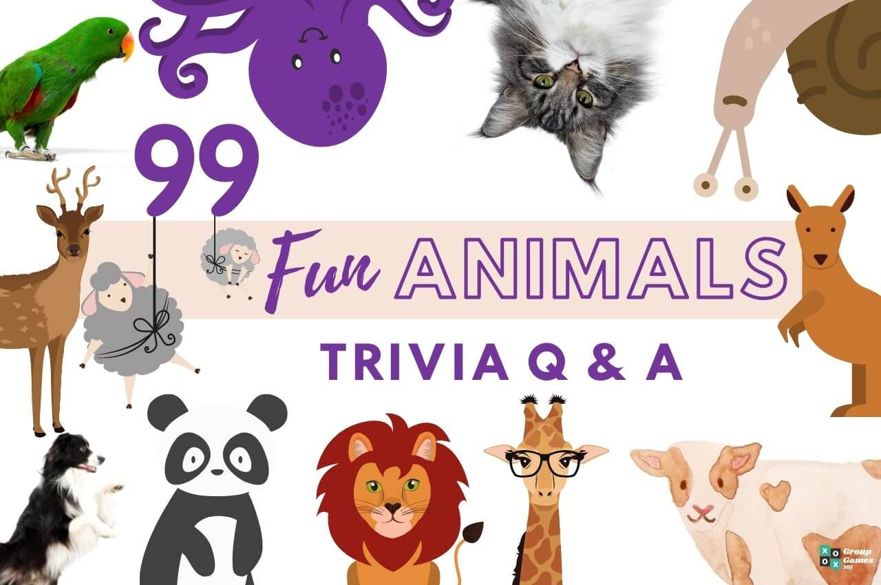 animal trivia questions Image